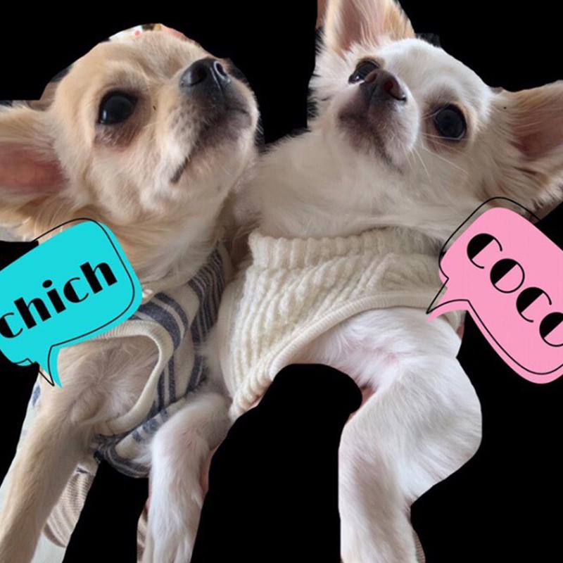 チッチちゃん&ココちゃん