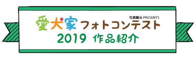 愛犬家フォトコンテスト 2019 作品紹介